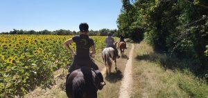 Balades à la Journée - Sur les Chemins de Cœur de Garonne