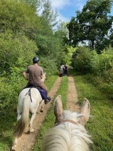 Gers - Le Pays d'Armagnac En Attelage ou à cheval !