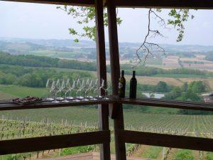 Le Madiran : Vin et Gastronomie, une randonnée d'exception...